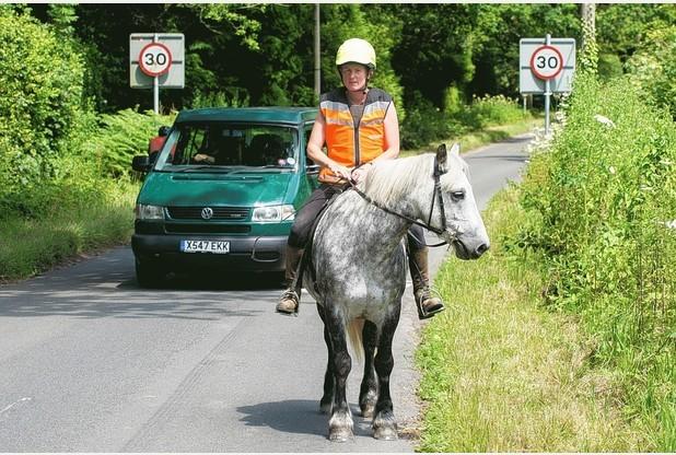 Cavaleiros e condutores – convivência pacífica na estrada
