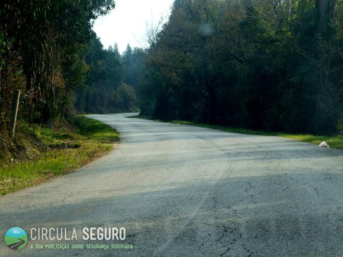 Estradas secundárias com a segurança condicionada (1)