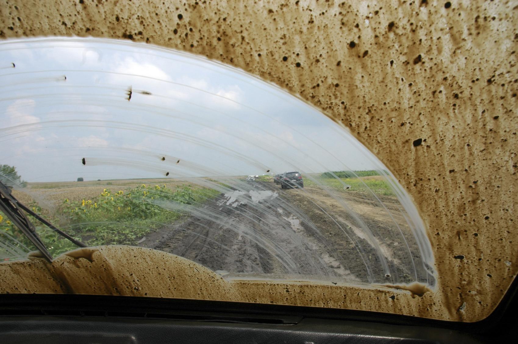 Carro limpo: estética ou segurança?