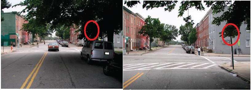 Sinais tapados representam risco para a segurança rodoviária