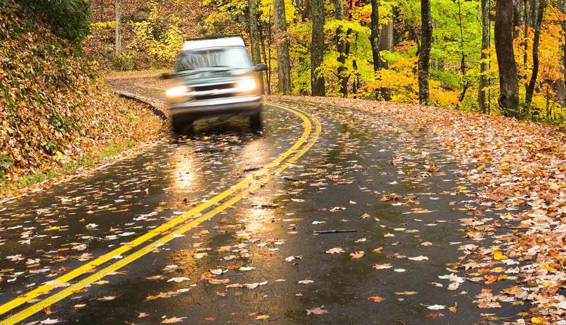 Como conduzir numa zona da estrada repleta de folhas húmidas?