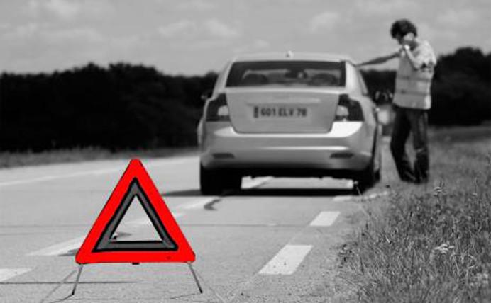 O que fazer para evitar atropelamentos